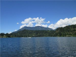 Year Round Recreation! Fishing, boating canoeing and awesome mountain nature setting